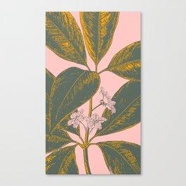 Modern Botanical Banana Leaf Canvas Print