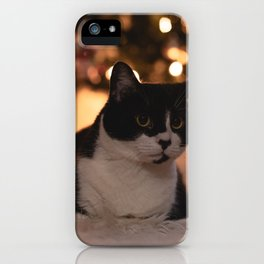 Cat by Christmas tree iPhone Case