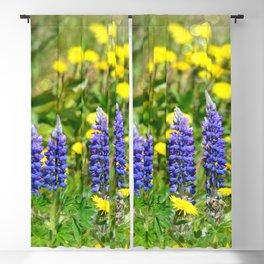 Serenity_Prayer - Spring Flowers Blackout Curtain