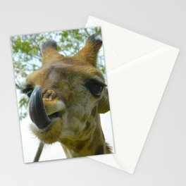 Africa's French Kiss Stationery Cards