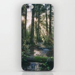 Seasonal iPhone Skin