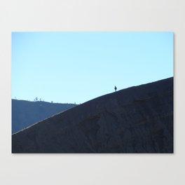 Lone trekker Canvas Print