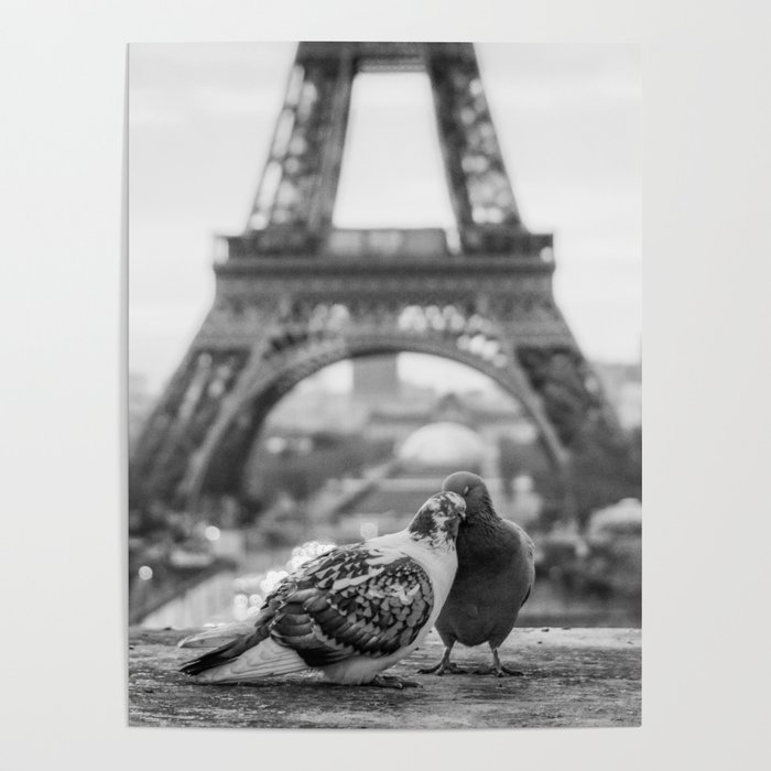 Love Birds Black And White Poster By Nocolordesigns Society6