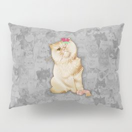 Peaches Revision Pillow Sham