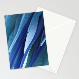 Blue Comet Stationery Cards