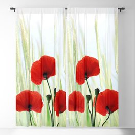 Poppies red 008 Blackout Curtain