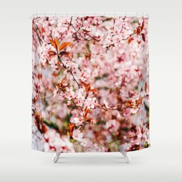 Cherry Blossom Tree (Color) Shower Curtain