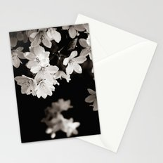 Little Whites ~ No.1 Stationery Cards
