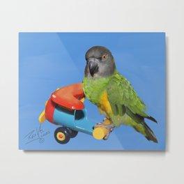 Senegal Parrot on a Toy Plane Metal Print
