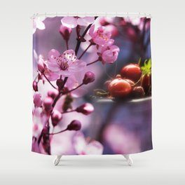 Fresh cherries in the pink blossom dream Shower Curtain
