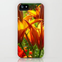 Iris Flowers - For a beautiful day iPhone Case