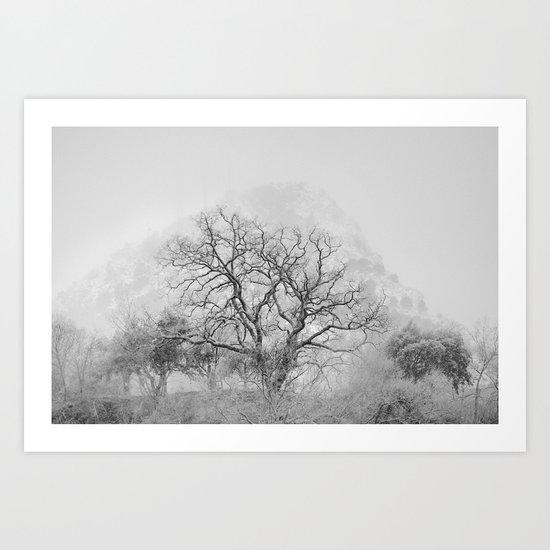 """King Mountain"" Monochrome. Art Print"