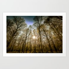 The Forest Sunset Art Art Print