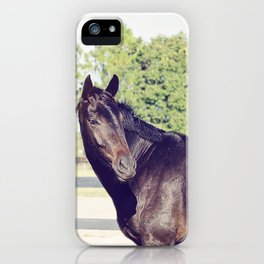 Bubba in Color iPhone Case