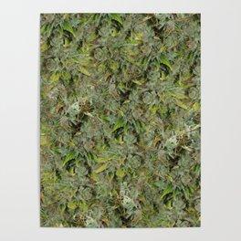 cannabis bud, marijuana macro Poster