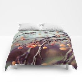 Marzipan Comforters