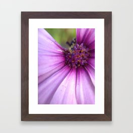 Missing Purple Petal Framed Art Print