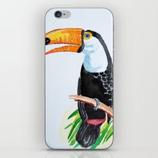 Toucan iPhone & iPod Skin