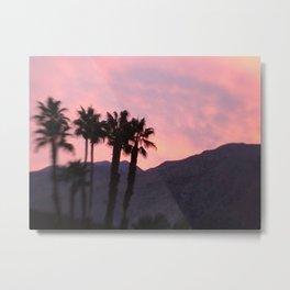 Palm Springs, California, pink, cactus, desert, desert photography, photography Metal Print