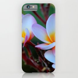 White Plumeria iPhone Case