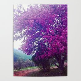 Glorious Spring Poster