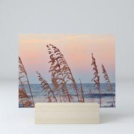 Windy Sunsets Mini Art Print