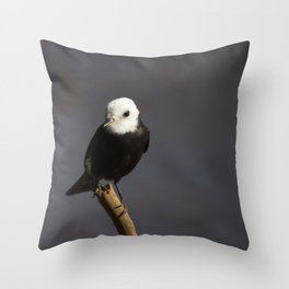 Birds from Pantanal Freirinha Throw Pillow