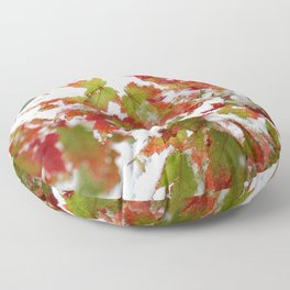 Holiday colors in a clash of seasons Floor Pillow