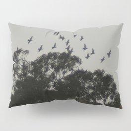 Nightfall flight Pillow Sham