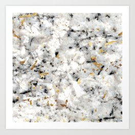 Classic Marble with Gold Specks Art Print