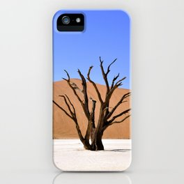 Dead Vlei iPhone Case