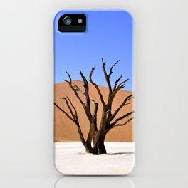 Dead Vlei iPhone Case
