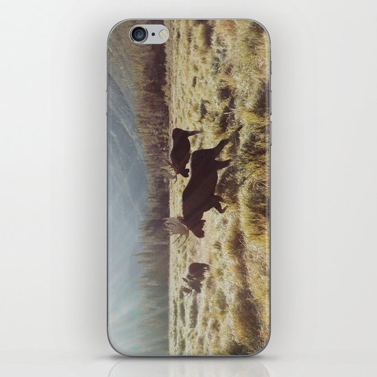 Three Meadow Moose iPhone & iPod Skin