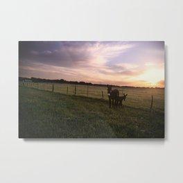 Donkey Sunrise Metal Print