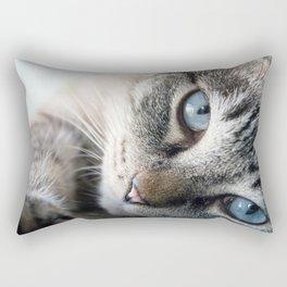 Blue Eyed Cat Close Up Rectangular Pillow