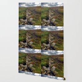 Wicklow Mountains, Republic of Ireland Wallpaper