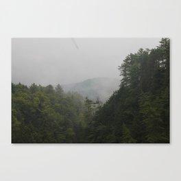 Fenil Canvas Print