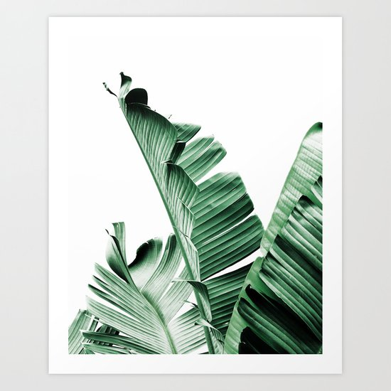 Banana leaf, Plant, Green, Minimal, Trendy decor, Interior, Wall art, Photo Art Print by scandihome