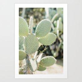 Prickly Pear Cactus Mickey's Ears. Minimalistic print - fine art photography Art Print
