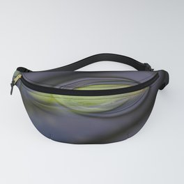 Emerging Fanny Pack