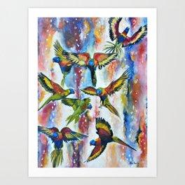 Grace - Lorikeets Birds Painting Art Print