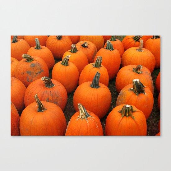 Plenty of Pumpkins! Canvas Print