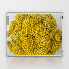 curry flowers II Laptop & iPad Skin