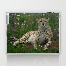 Cheetah Amidst Spring Flowers Laptop & iPad Skin