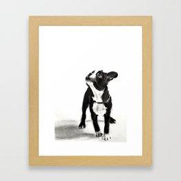 loyalty Framed Art Print