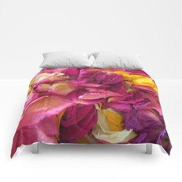 Hot Potpourri Comforters