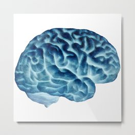 Isolated brain Metal Print