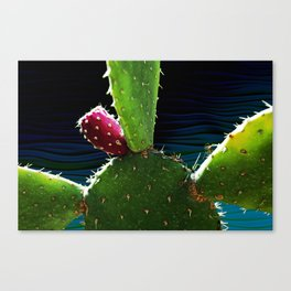 Cactus Needs A Hug Canvas Print