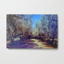 Channel Trees Metal Print
