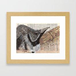 Anteater on Dictionary Paper Framed Art Print